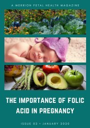 The Importance of Folic Acid in Pregnancy - Includes Recipes-By Merrion Fetal Health