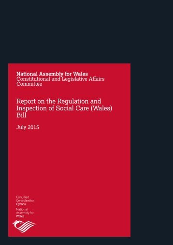Report on the Regulation and Inspection of Social Care (Wales) Bill