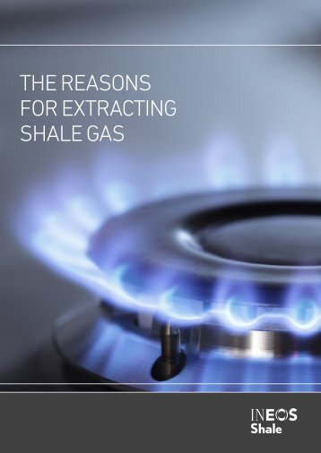 THE REASONS FOR EXTRACTING SHALE GAS