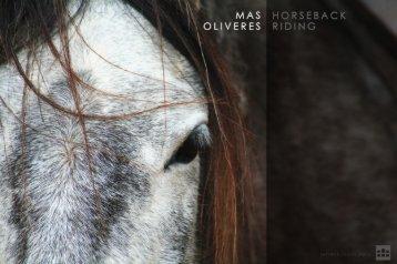 horseridingBrochure