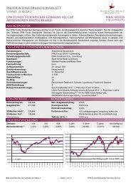 Produktinformationsblatt (PDF, 74 kB) - FPM-AG