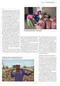 Nagaya Magazin 4.15 - Page 5