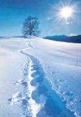Posthotel - Winterpostille 2015/16 - Seite 7