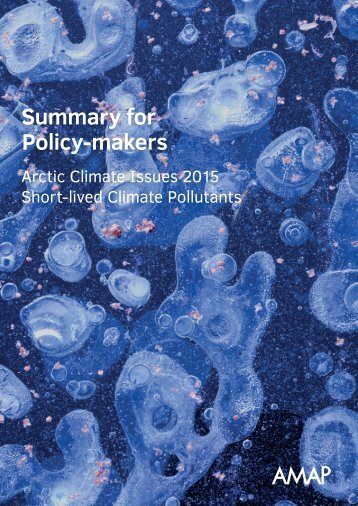 Summary for Policy-makers