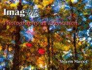 Photography as Expression