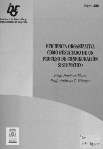 eficienciaorgamzativa como resultado de un proceso de ...