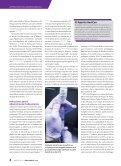 Entrenamiento Médico Militar - Page 4