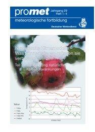 P rozessein PUMA P rozessein GCM s - Deutsche Meteorologische ...