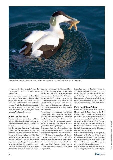 PolarNEWS Magazin - 18 - CH