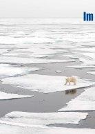 PolarNEWS-Spitzbergen - CH - Page 4