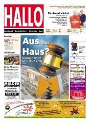 hallo-steinfurt_25-11-2015