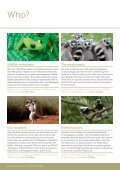 MADAGASCAR - Page 6