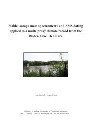Stable isotope ratio mass spectrometry