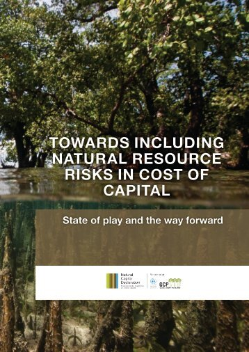 TOWARDS INCLUDING NATURAL RESOURCE RISKS IN COST OF CAPITAL