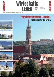 PDF Durchblättern