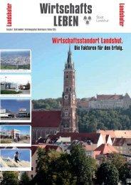 PDF zum Durchblättern