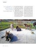 12_15_Esel - Page 3