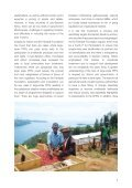 From subsistence to successful businesses - Page 7