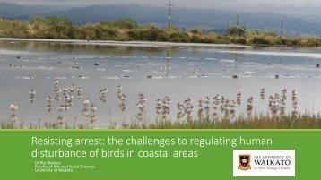 disturbance of birds in coastal areas