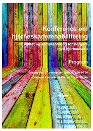 Konference om hjerneskaderehabilitering