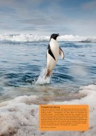PolarNEWS Magazin - 13 - Page 5
