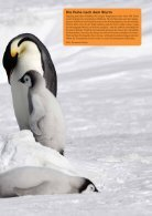 PolarNEWS Magazin - 11 - Page 5
