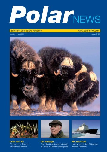 PolarNEWS Magazin - 4
