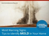 When to Call a Mold Remediation Service in New Jersey