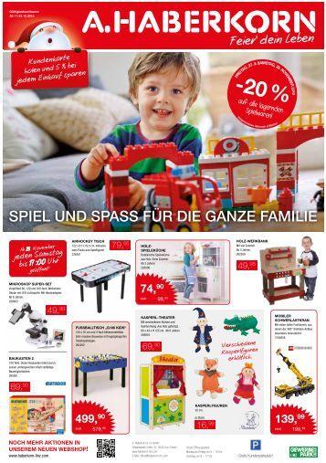 Haberkorn Flugblatt November 2015