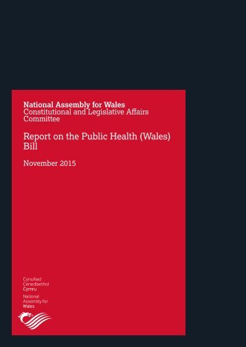 Report on the Public Health (Wales) Bill