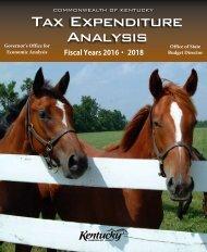 Tax Expenditure Analysis