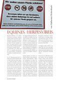pferdetrendsMagazin No. 04 - Okt/Nov 2015  - Page 6