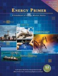 Energy Primer