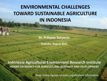 TOWARD SUSTAINABLE AGRICULTURE IN INDONESIA