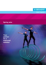 Spring wire Your partner for a balanced solution - Bekaert
