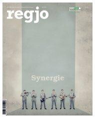 regjo Südostniedersachsen – Heft 4 – 2015 – Synergie