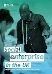 Developing a thriving social enterprise sector