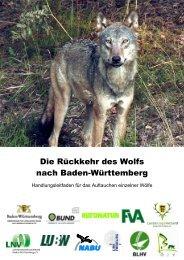 Die Rückkehr des Wolfs nach Baden-Württemberg