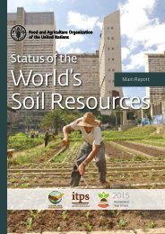 World's Soil Resources