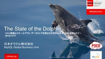 The State of the Dolphin