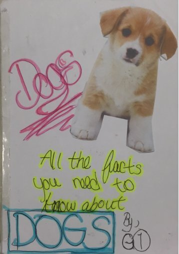 3B booklet - Dogs
