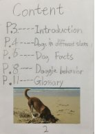 3B booklet - Dogs - Page 2
