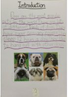 3B booklet - Dogs - Page 3