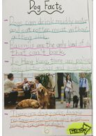 3B booklet - Dogs - Page 6