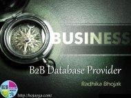 B2B Database Provider