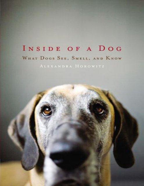 Inside Of A Dog Alexandra Horowitz