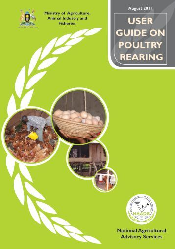 POULTRY REARING