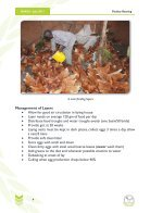POULTRY REARING - Page 4
