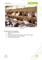 POULTRY REARING - Page 5