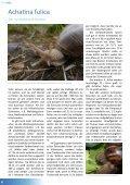 TierZeit - Ausgabe 2 - Seite 6